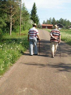 gubb promenad