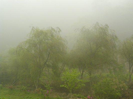 06-真的很大的霧