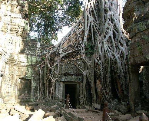逛悠柬埔寨(二)吴哥王城 - lhapple403 - lhapple403的博客